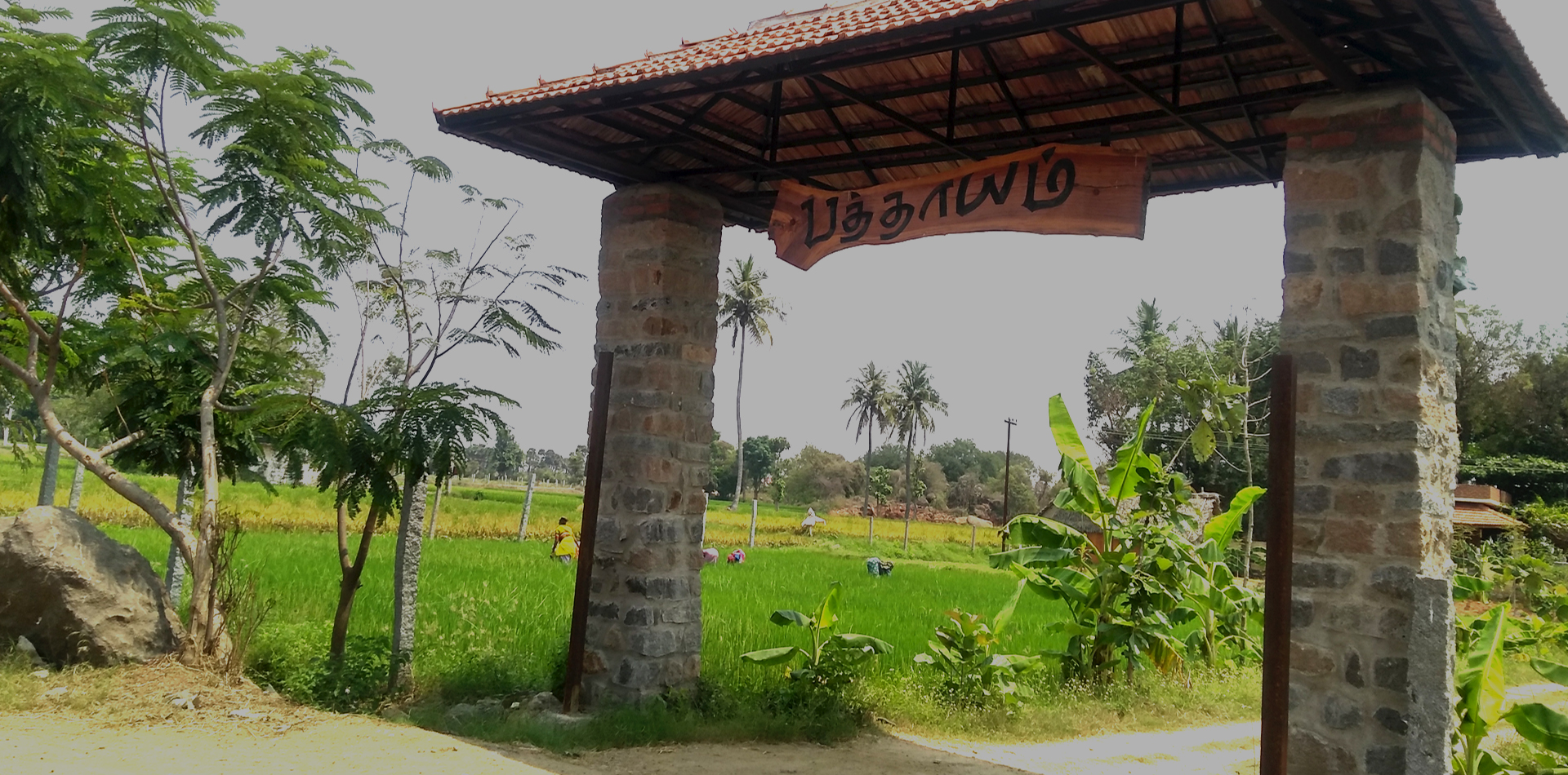 NATURE SURROUNDED PATHAYAM GIVES  NEW EXPERIENCE TO EXPLORE